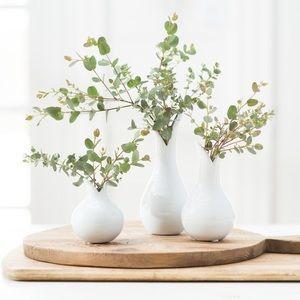 Magnolia Market Perla Vases